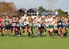 Cross Country series concludes with Championships